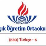 Açık Öğretim Ortaokulu 2018-2019 Öğretim Yılı 1 Dönem (730) Türkçe – 7