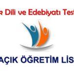 Açık Lise (619) Seçmeli Türk Dili ve Edebiyatı 1 Testi (Aralık 2018)
