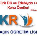 Açık Lise Türk Dili ve Edebiyatı 1-8 Konu Özetleri