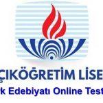 AÖL Türk Edebiyatı Testleri