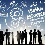 İnsan Kaynakları Yönetimi 2018 YKS Taban Puanları