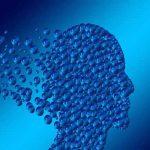 Psikoloji Mezunlarının Çalışma Alanları ve İş Olanakları