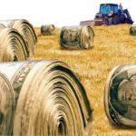 Tarım Ekonomisi Mezunlarının İş İmkanları